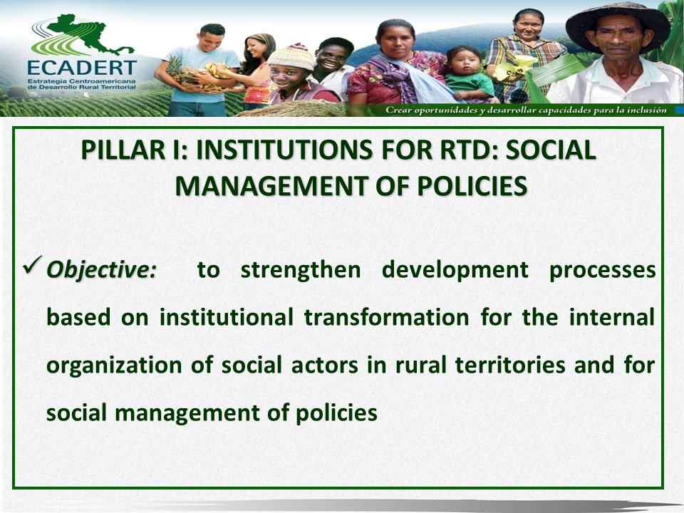 PILLAR I: INSTITUTIONS FOR RTD: SOCIAL MANAGEMENT OF POLICIES Objective: Objective: to strengthen development processes based on institutional transformation for the internal organization of social actors in rural territories and for social management of policies