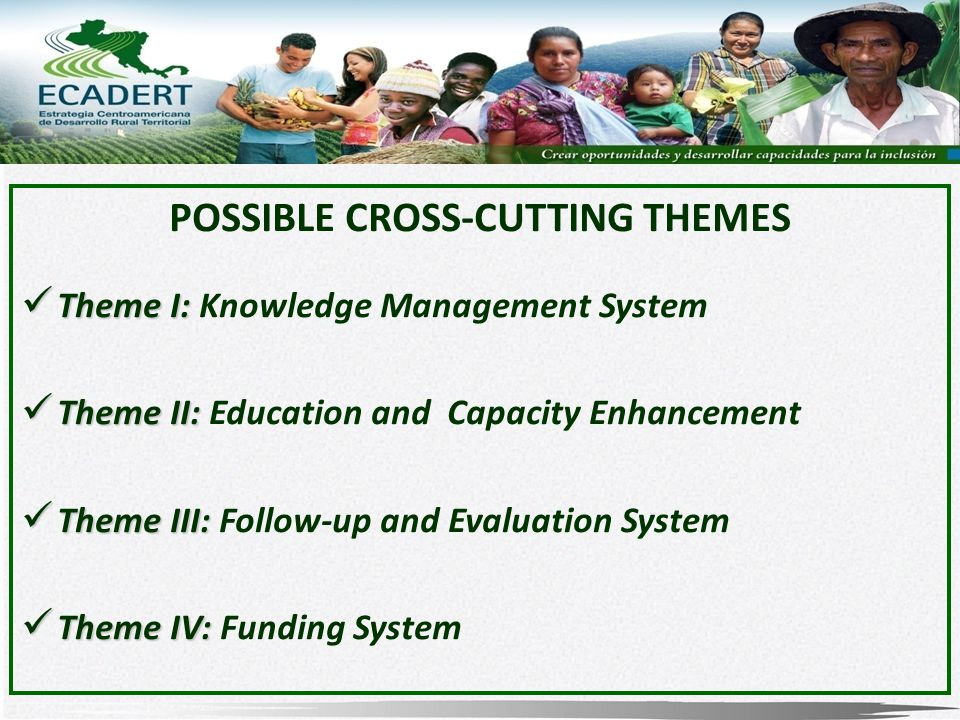 POSSIBLE CROSS-CUTTING THEMES Theme I: Theme I: Knowledge Management System Theme II: Theme II: Education and Capacity Enhancement Theme III: Theme III: Follow-up and Evaluation System Theme IV: Theme IV: Funding System