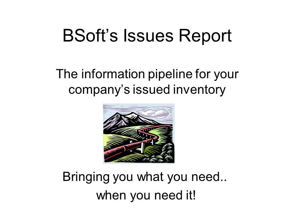 BSoft's Issues Report The information pipeline for your company's issued inventory Bringing you what you need..
