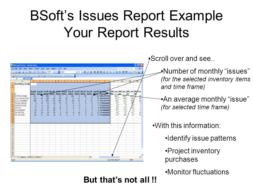 BSoft's Issues Report Example Your Report Results Scroll over and see..