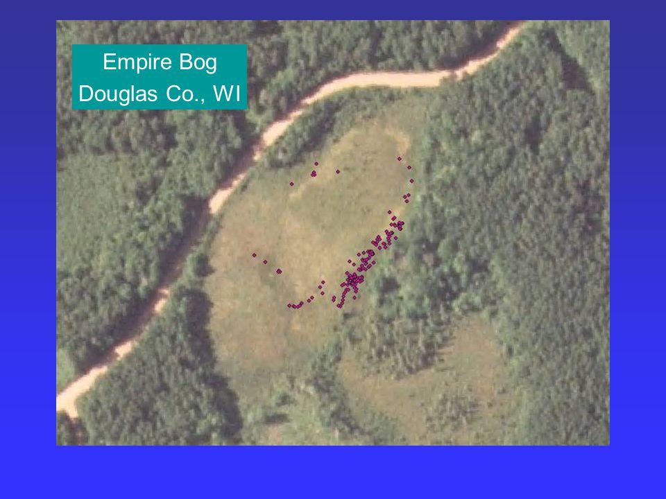 Empire Bog Douglas Co., WI