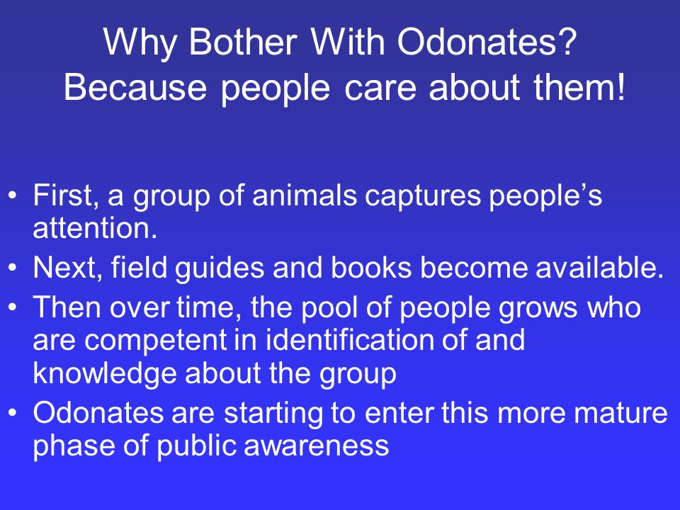 Why Bother With Odonates. Because people care about them.