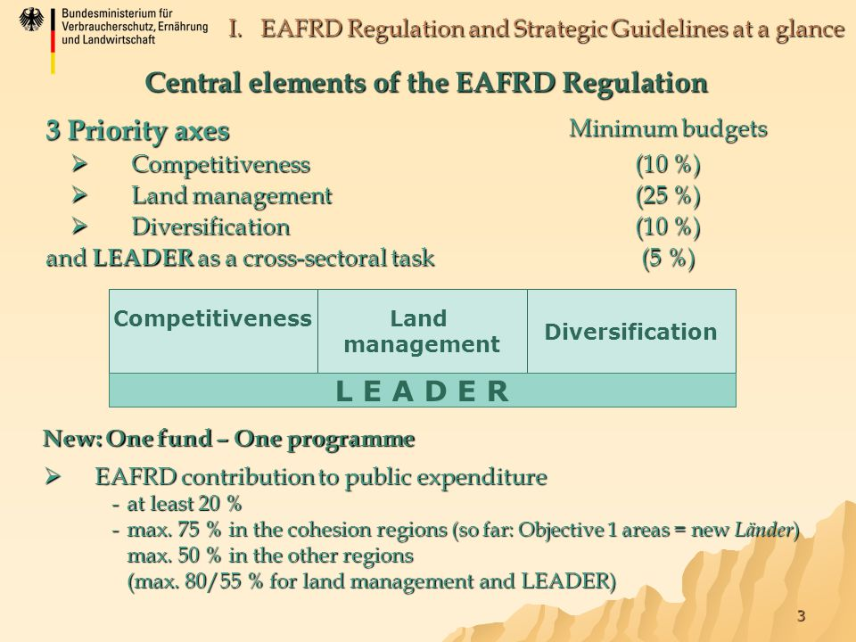 3 I. EAFRD Regulation and Strategic Guidelines at a glance Central elements of the EAFRD Regulation 3 Priority axes Minimum budgets  Competitiveness