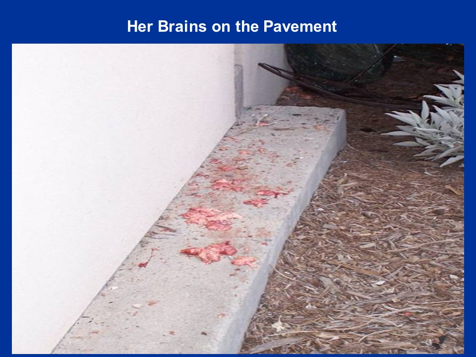 Her Brains on the Pavement