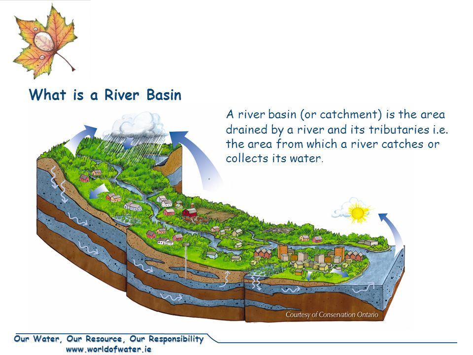 Our Water, Our Resource, Our Responsibility www.worldofwater.ie What is a River Basin A river basin (or catchment) is the area drained by a river and its tributaries i.e.