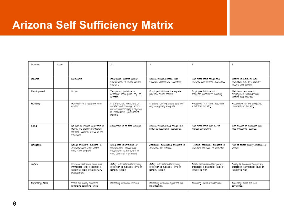 6 Arizona Self Sufficiency Matrix DomainScore12345 Income no incomeInadequate income and/or spontaneous or inappropriate spending Can meet basic needs