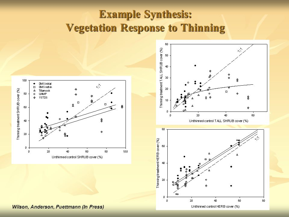 Example Synthesis: Vegetation Response to Thinning Wilson, Anderson, Puettmann (In Press)