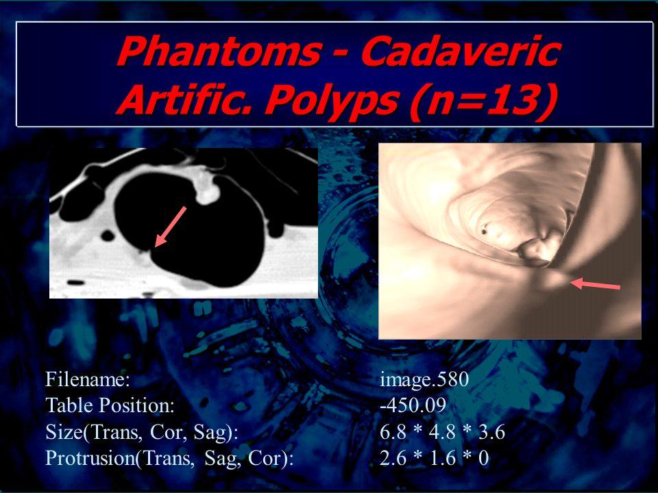 Phantoms - Cadaveric Artific. Polyps (n=13) Filename: image.580 Table Position: -450.09 Size(Trans, Cor, Sag): 6.8 * 4.8 * 3.6 Protrusion(Trans, Sag,