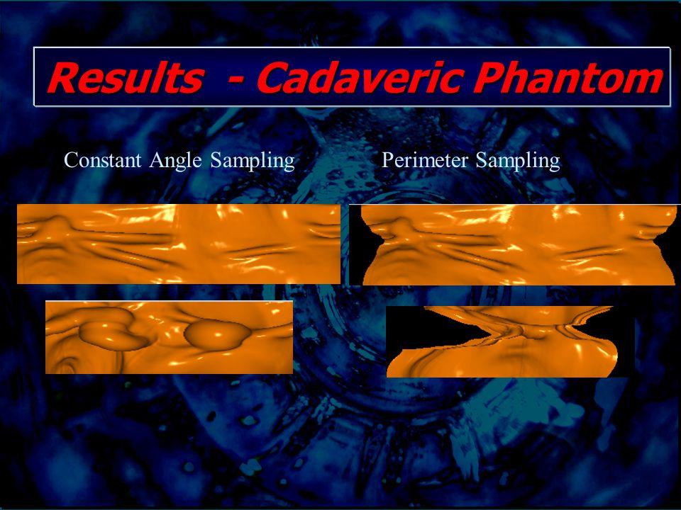Constant Angle SamplingPerimeter Sampling