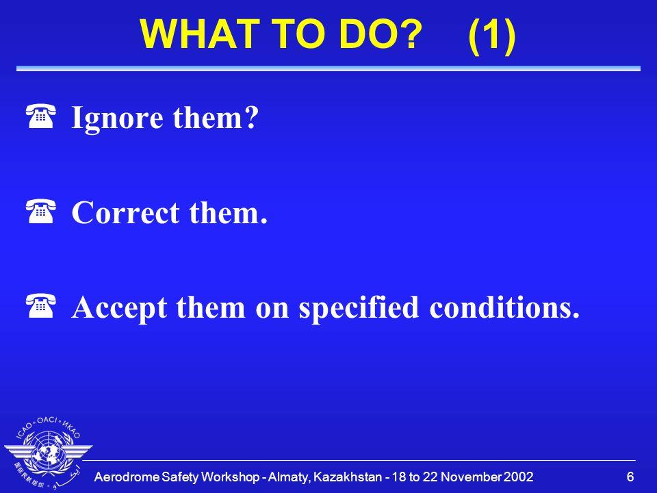 Aerodrome Safety Workshop - Almaty, Kazakhstan - 18 to 22 November 20027 WHAT TO DO.