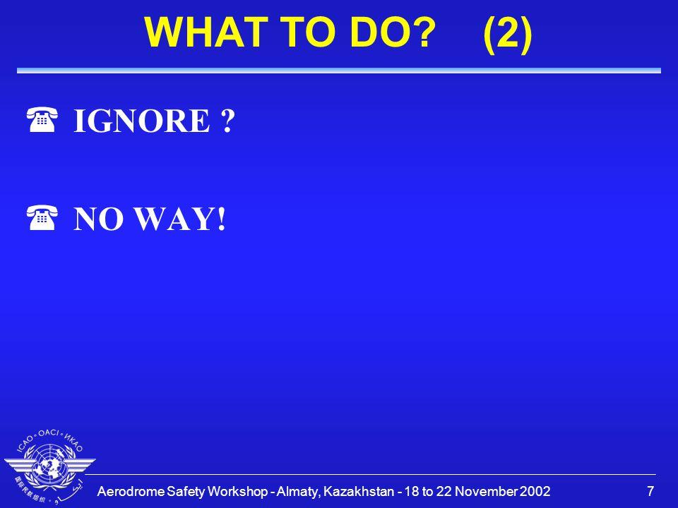 Aerodrome Safety Workshop - Almaty, Kazakhstan - 18 to 22 November 20028 WHAT TO DO.