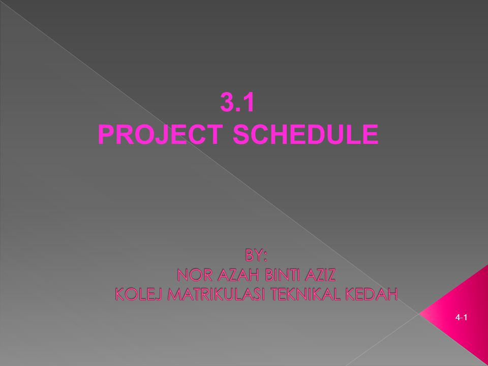 4-1 3.1 PROJECT SCHEDULE