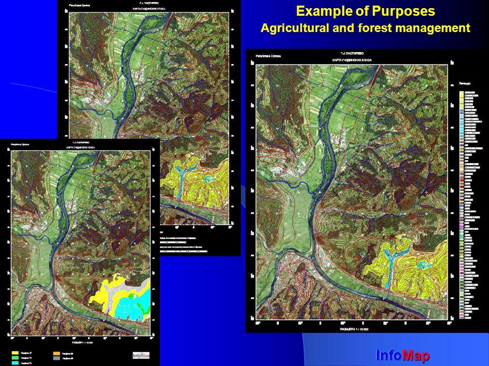 InfoMap Example of Purposes - Power economics