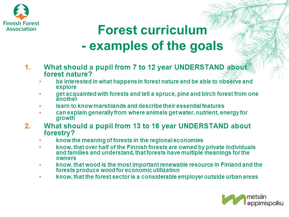 Forest curriculum - examples of the goals 1.What should a pupil from 7 to 12 year UNDERSTAND about forest nature? be interested in what happens in for