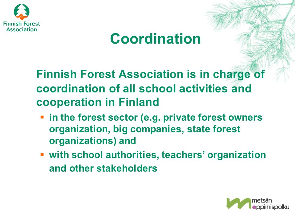 Coordination Finnish Forest Association is in charge of coordination of all school activities and cooperation in Finland  in the forest sector (e.g.