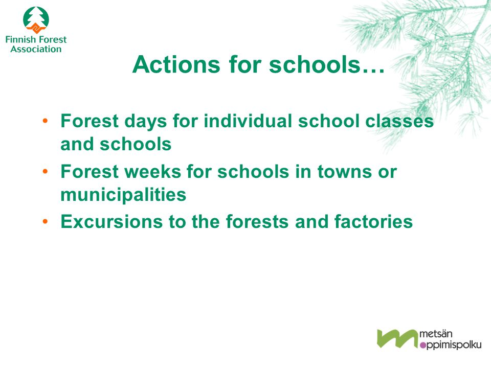 Actions for schools… Forest days for individual school classes and schools Forest weeks for schools in towns or municipalities Excursions to the fores