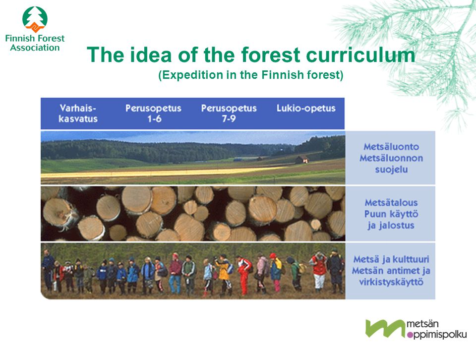 The idea of the forest curriculum (Expedition in the Finnish forest)