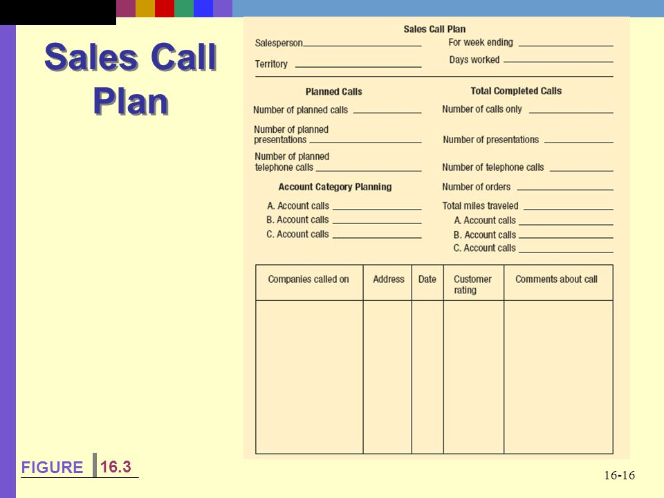 16-16 Sales Call Plan FIGURE 16.3