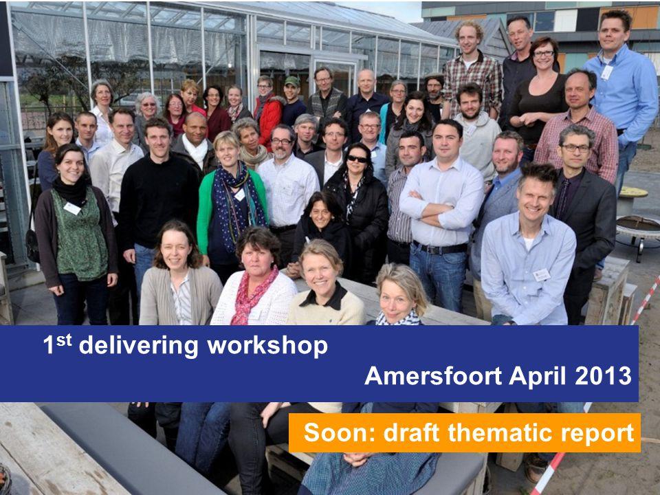 1 st delivering workshop Amersfoort April 2013 Soon: draft thematic report