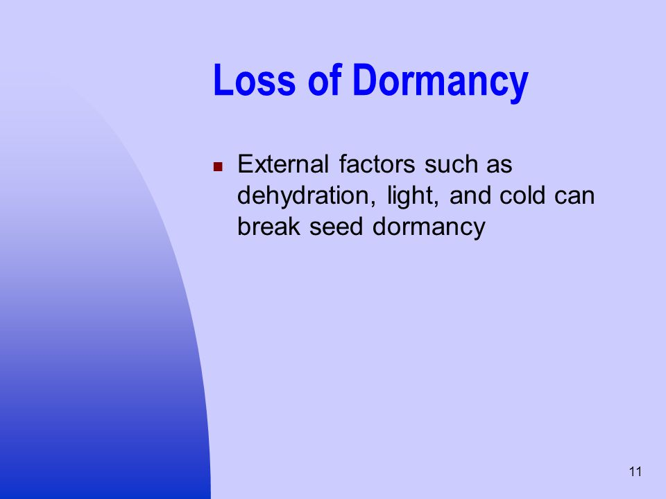 11 Loss of Dormancy External factors such as dehydration, light, and cold can break seed dormancy