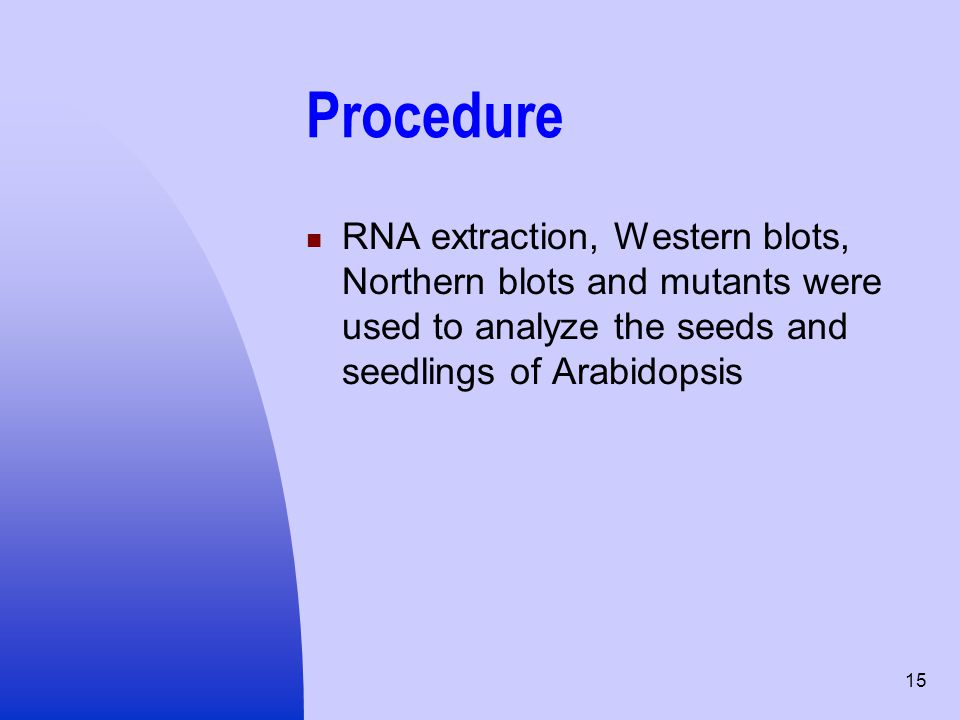 15 Procedure RNA extraction, Western blots, Northern blots and mutants were used to analyze the seeds and seedlings of Arabidopsis