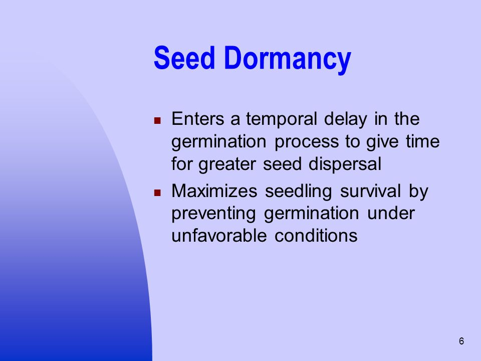 6 Seed Dormancy Enters a temporal delay in the germination process to give time for greater seed dispersal Maximizes seedling survival by preventing g