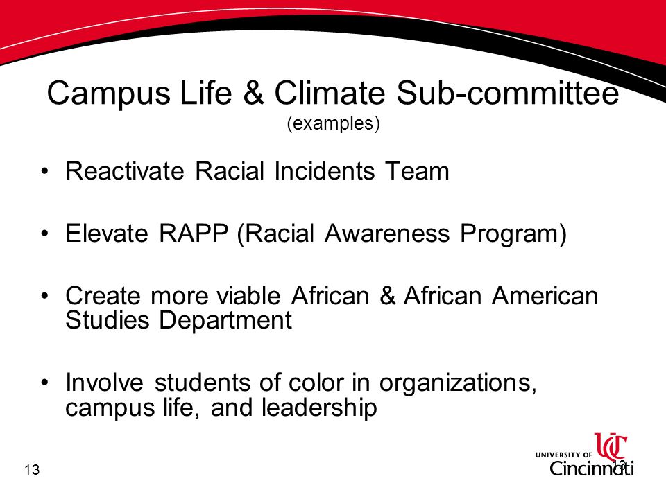 13 Campus Life & Climate Sub-committee (examples) Reactivate Racial Incidents Team Elevate RAPP (Racial Awareness Program) Create more viable African & African American Studies Department Involve students of color in organizations, campus life, and leadership 13