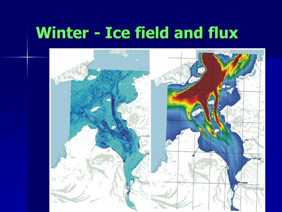 Winter - Ice field and flux