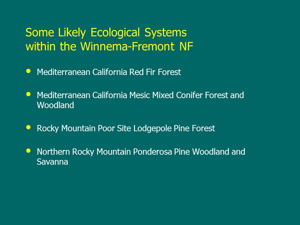 Some Likely Ecological Systems within the Winnema-Fremont NF Mediterranean California Red Fir Forest Mediterranean California Mesic Mixed Conifer Forest and Woodland Rocky Mountain Poor Site Lodgepole Pine Forest Northern Rocky Mountain Ponderosa Pine Woodland and Savanna