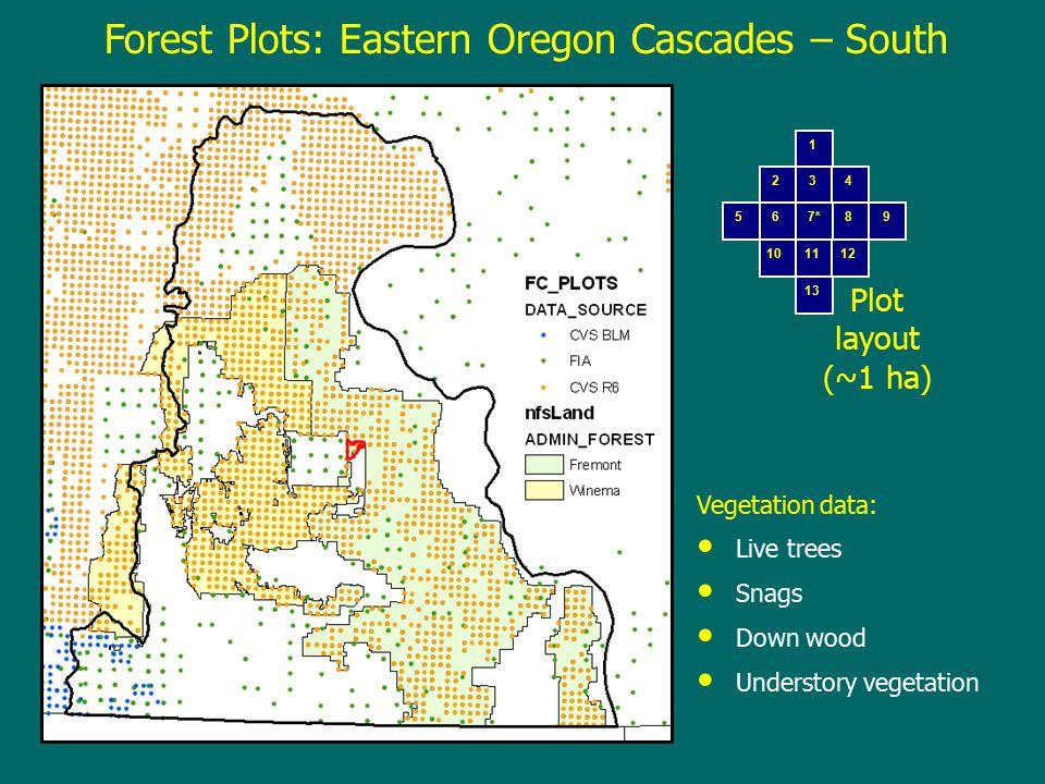 Forest Plots: Eastern Oregon Cascades – South 1 234 56 7* 89 101112 13 Plot layout (~1 ha) Vegetation data: Live trees Snags Down wood Understory vegetation