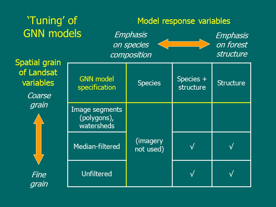 GNN model specification Species Species + structure Structure Image segments (polygons), watersheds (imagery not used) Median-filtered√√ Unfiltered√√ Coarse grain Fine grain Model response variables Spatial grain of Landsat variables Emphasis on species composition Emphasis on forest structure 'Tuning' of GNN models