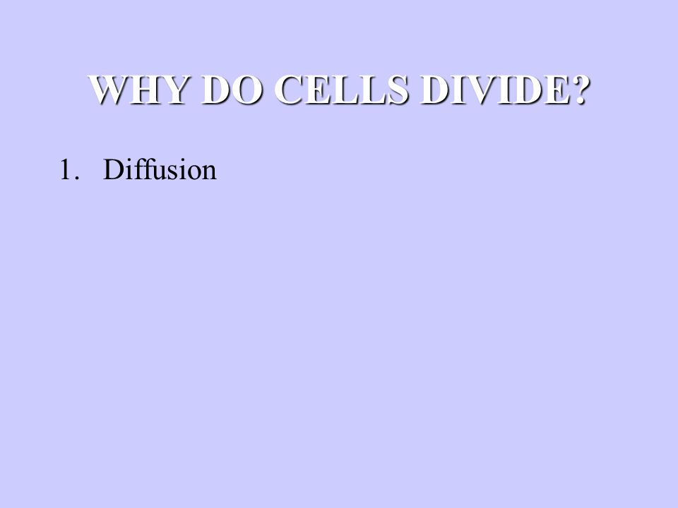 WHY DO CELLS DIVIDE? 1.Diffusion 2.DNA