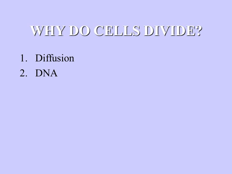 WHY DO CELLS DIVIDE? 1.Diffusion 2.DNA 3.Surface area-to-volume ratio