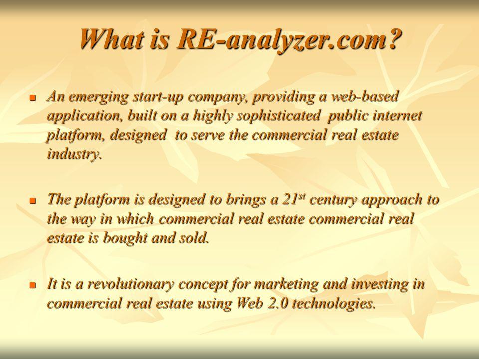 What is RE-analyzer.com.