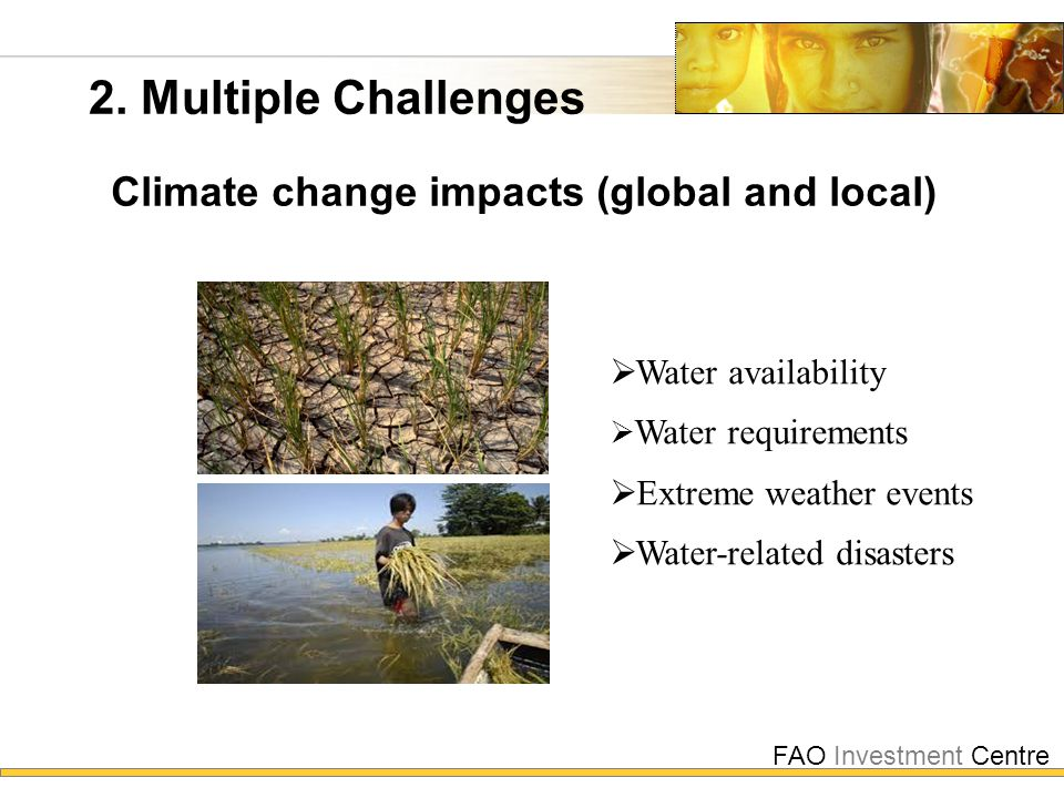 FAO Investment Centre 2. Multiple Challenges Climate change impacts (global and local)  Water availability  Water requirements  Extreme weather eve