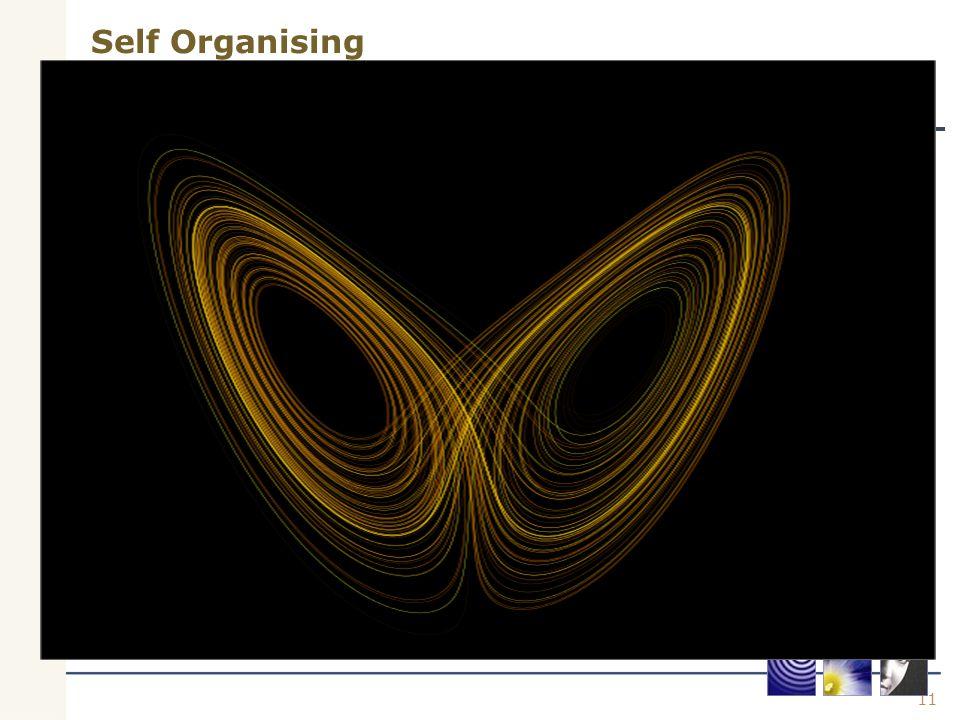 11 Self Organising