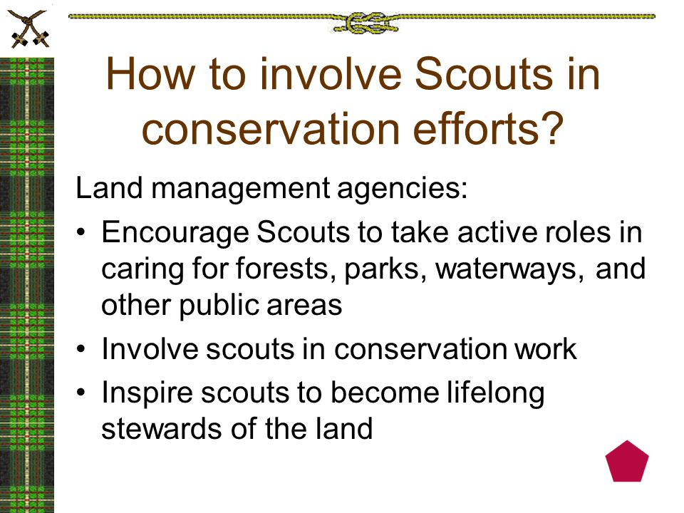 How to involve Scouts in conservation efforts.
