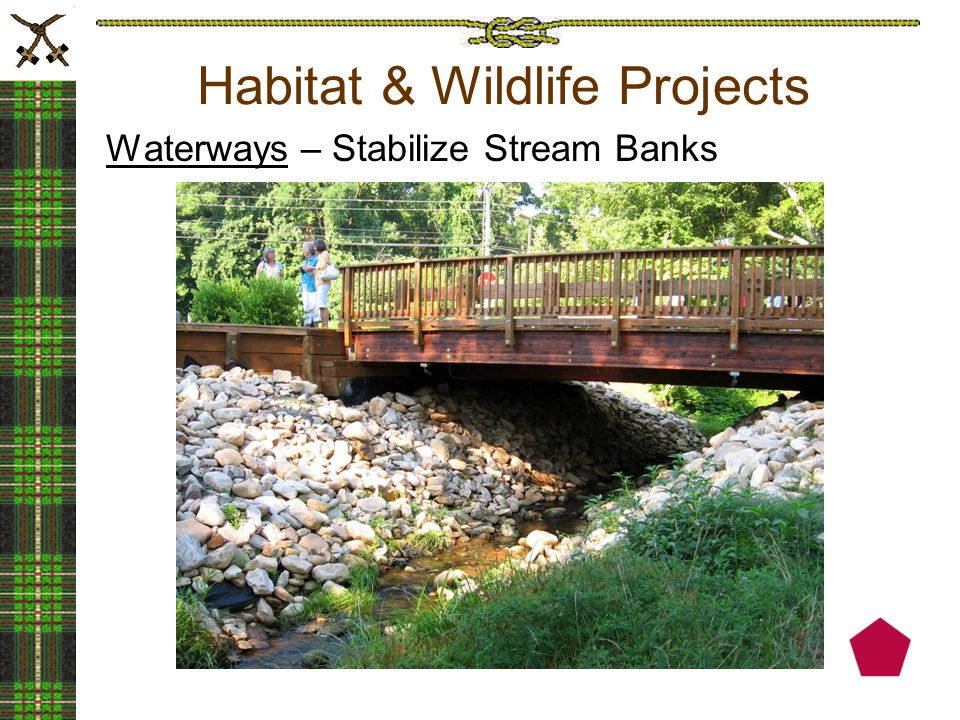 Habitat & Wildlife Projects Waterways – Stabilize Stream Banks