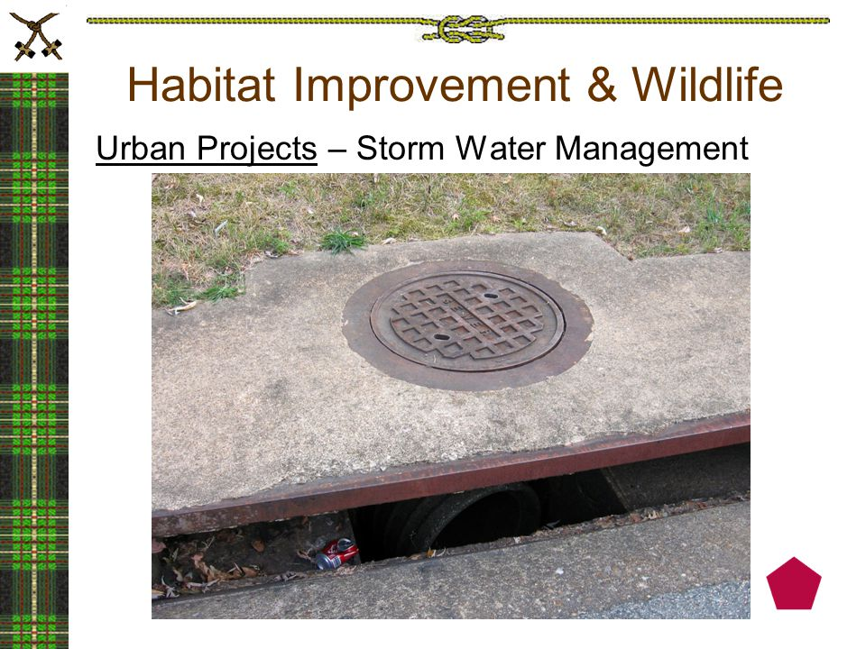 Habitat Improvement & Wildlife Urban Projects – Storm Water Management