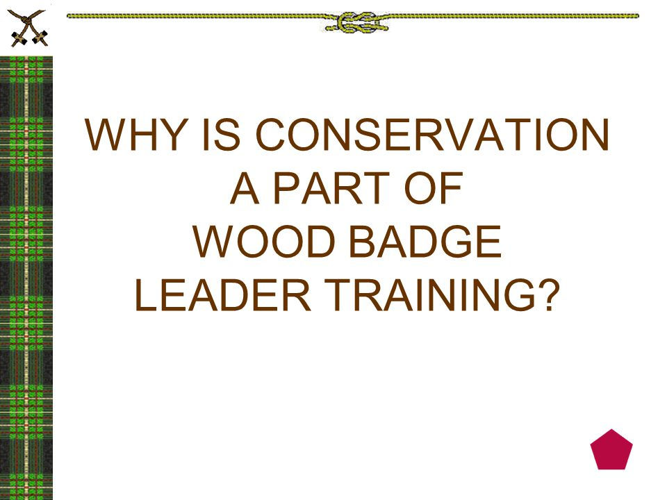 Conservation and environmental education have always been deeply woven into the philosophy and programs of the Boy Scouts of America