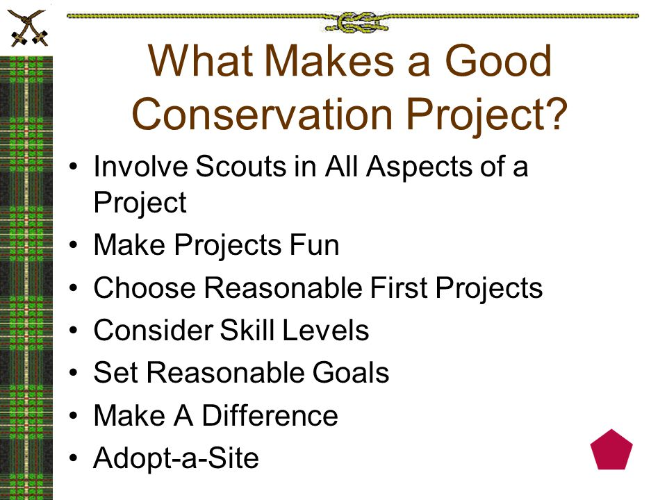 What Makes a Good Conservation Project.