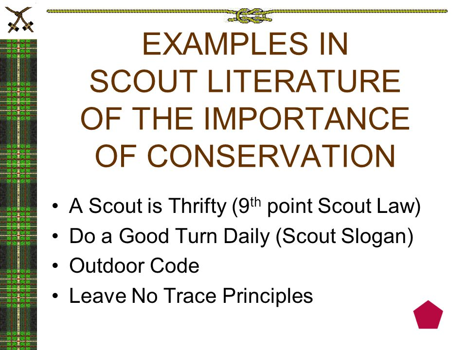 EXAMPLES IN SCOUT LITERATURE OF THE IMPORTANCE OF CONSERVATION Scout Law: A Scout is Thrifty: A Scout works to pay his way and to help others.