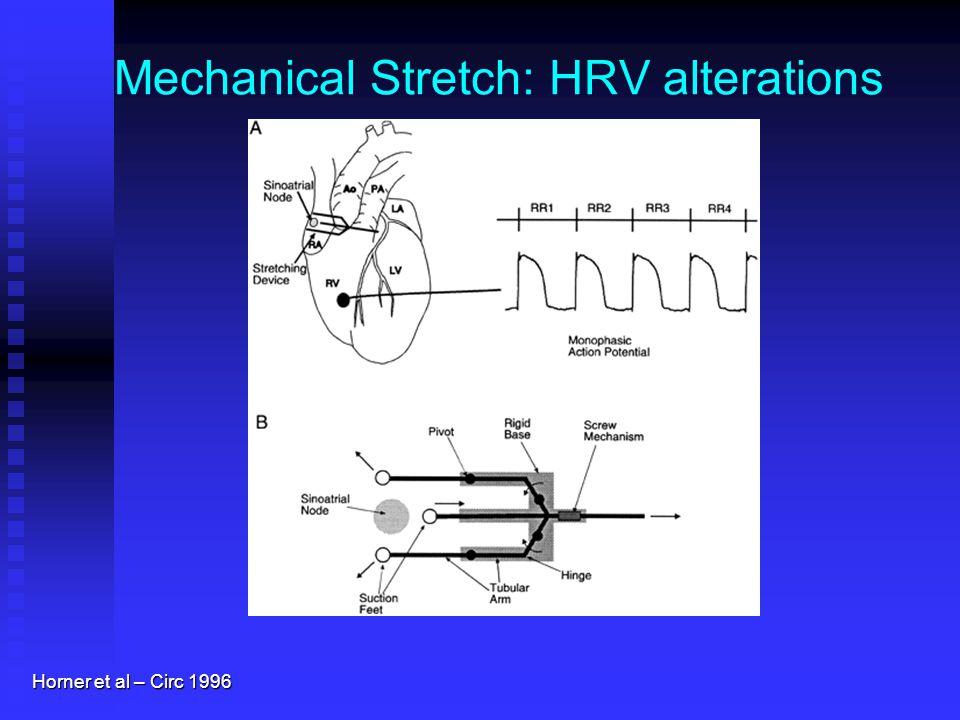 Mechanical Stretch: HRV alterations Horner et al – Circ 1996