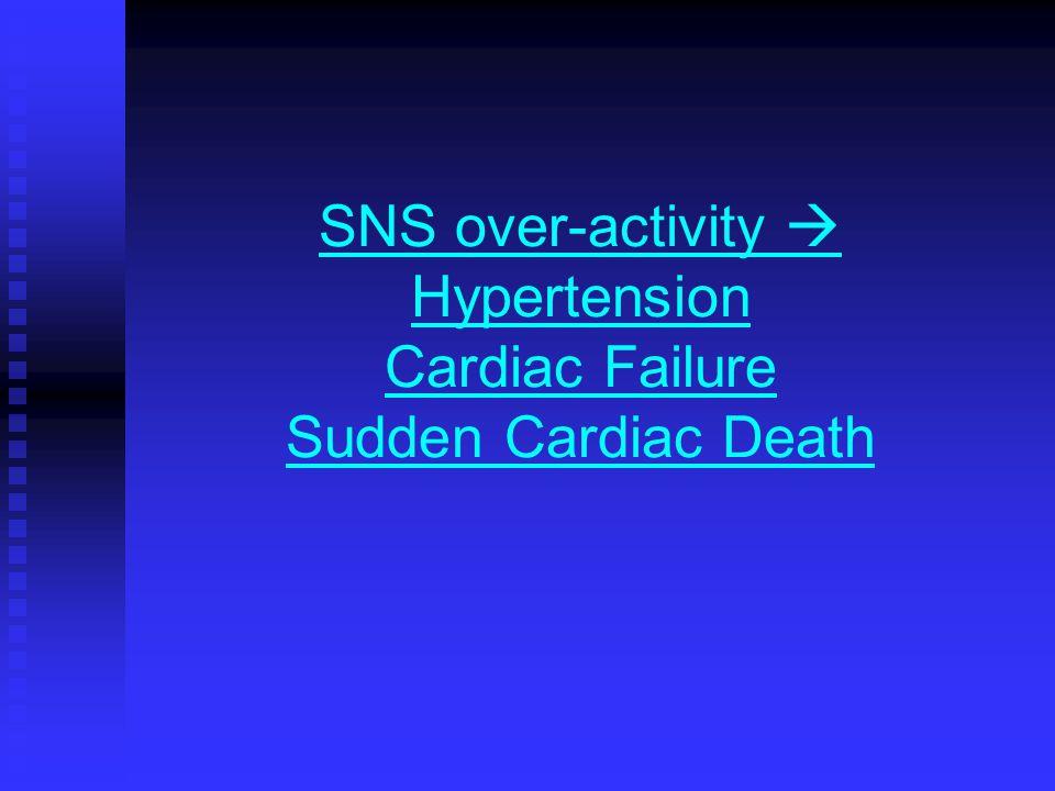 SNS over-activity  Hypertension Cardiac Failure Sudden Cardiac Death