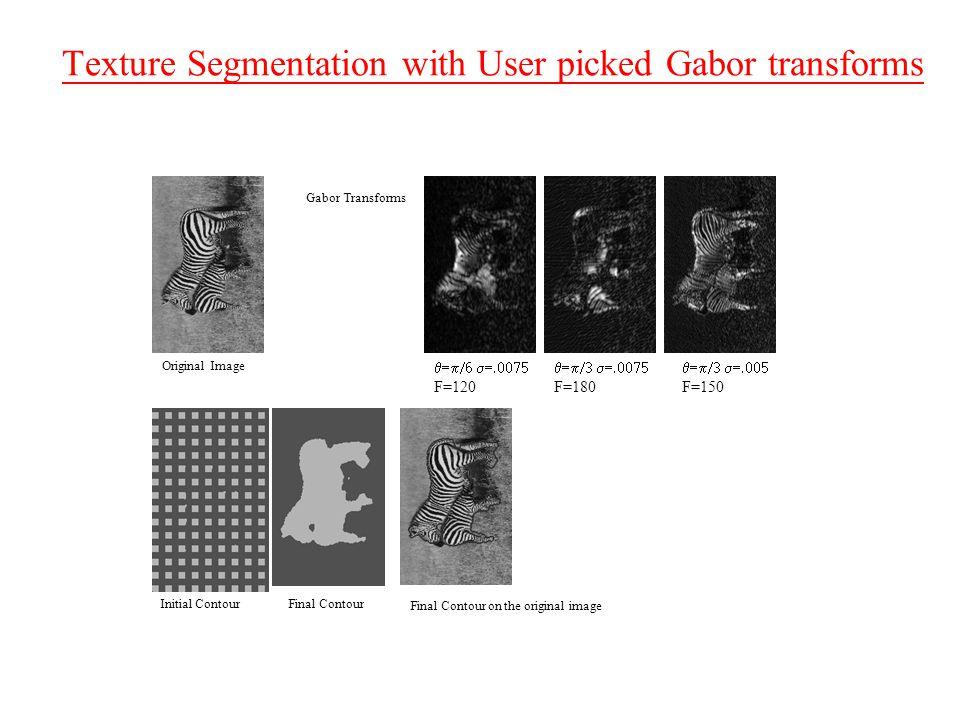 Texture Segmentation with User picked Gabor transforms Original Image Gabor Transforms Initial ContourFinal Contour Final Contour on the original image  F=120  F=180  F=150