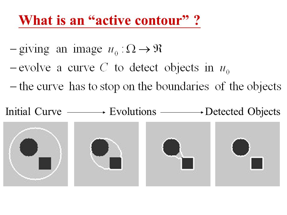 What is an active contour ? Initial Curve Evolutions Detected Objects