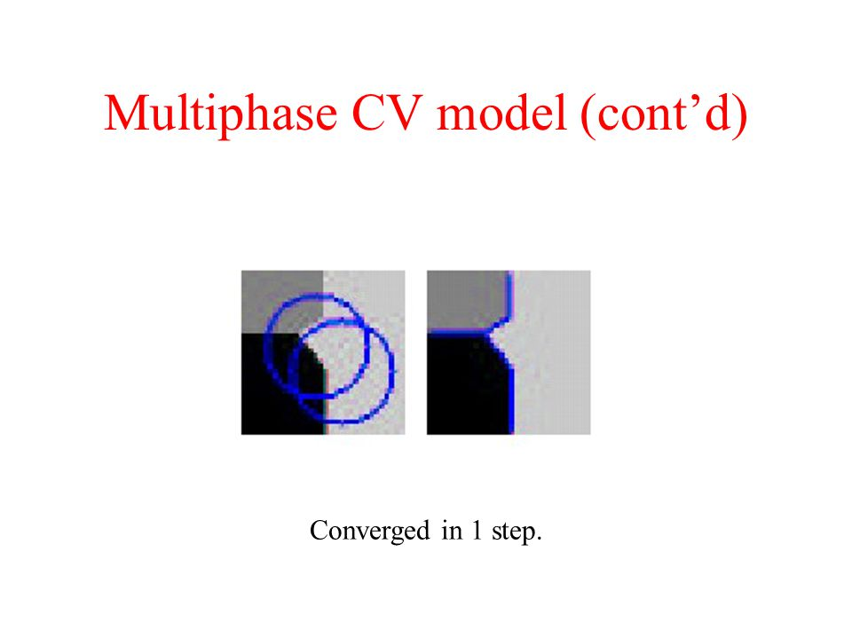 Multiphase CV model (cont'd) Converged in 1 step.