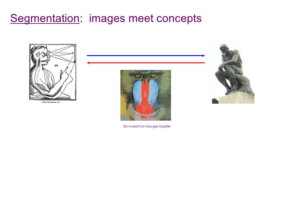 Segmentation: images meet concepts Borrowed from Georges Koepfler