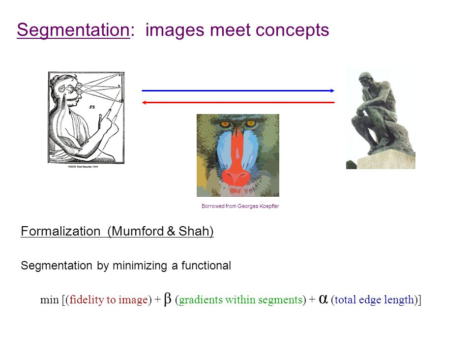 Segmentation: images meet concepts Borrowed from Georges Koepfler Formalization (Mumford & Shah) min [(fidelity to image) + β (gradients within segments) + α (total edge length)] Segmentation by minimizing a functional