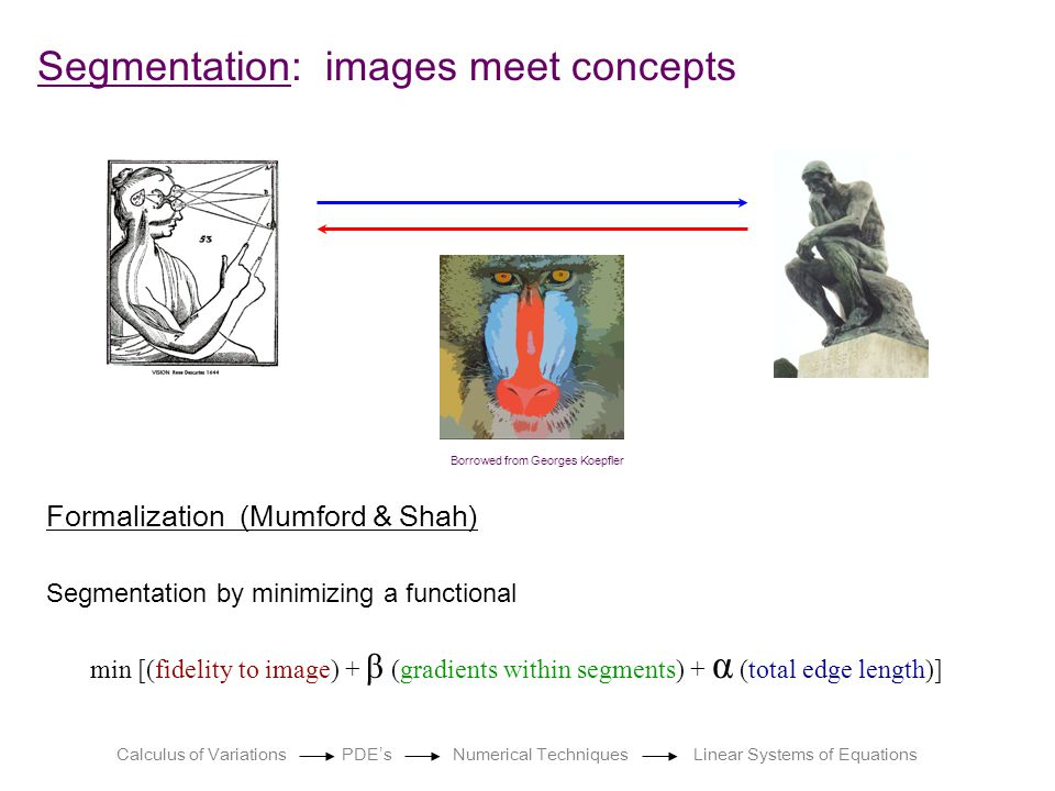 Segmentation: images meet concepts Borrowed from Georges Koepfler Formalization (Mumford & Shah) min [(fidelity to image) + β (gradients within segments) + α (total edge length)] Segmentation by minimizing a functional Calculus of Variations PDE ' s Numerical Techniques Linear Systems of Equations